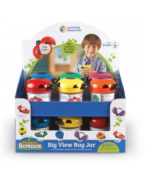 BIG VIEW BUG JAR-POP DISPLAY OF 12